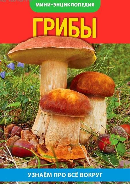 Энциклопедия-мини «Грибы», 12*17см, 20 стр.