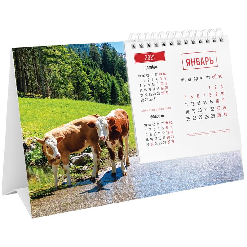 """Календарь-домик 2021г, 200х130мм, на гребне """"Mono. Символ года"""" (OfficeSpace)"""